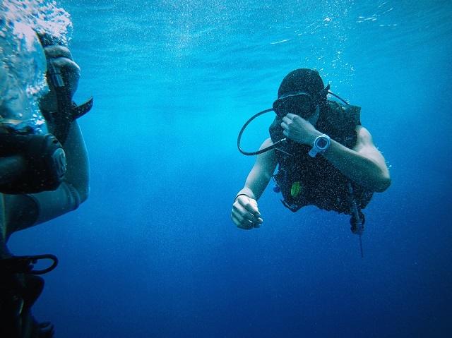 image1 As melhores praias para mergulho em Bombinhas